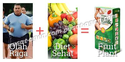 Pelangsing Fruit N Plant obat pelangsing fruit plant pelangsing herbal