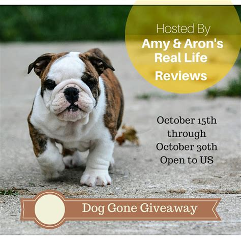 giveaway puppies scrigit makes cleaning easier giveaway holidaygiftguide