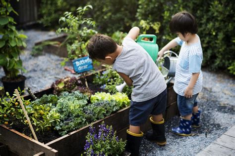 gardening   build healthier happier kids