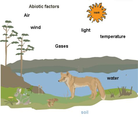 tropical plant biology impact factor abiotic and biotic components the arctic wolf
