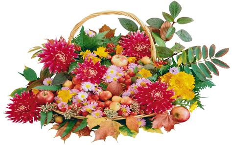 fruit x flowers baskets of flowers and fruit 2560x1600 wallpapers13