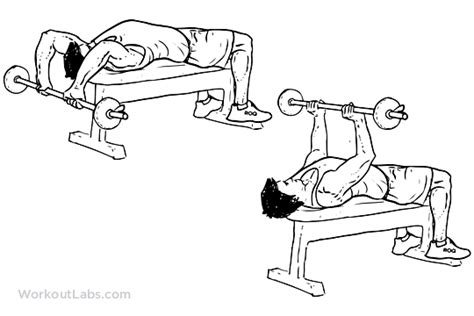 triceps extension bench press fitness with a disability workout day 1
