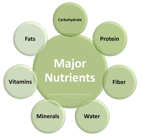 protein nutrients major nutrients of food 28 images list of nutrients
