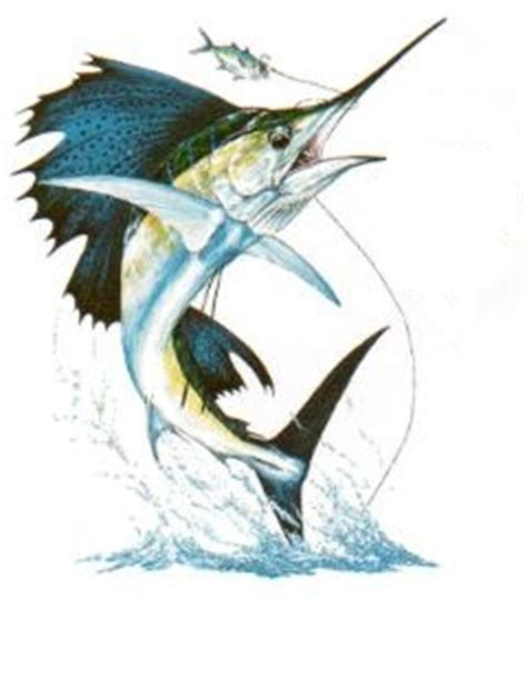 sailfish tattoo designs fish meanings pictures images graphics