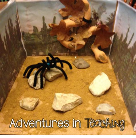 Parent Letter For Diorama Animal Research Project In The Lower Grades Adventures In Teaching
