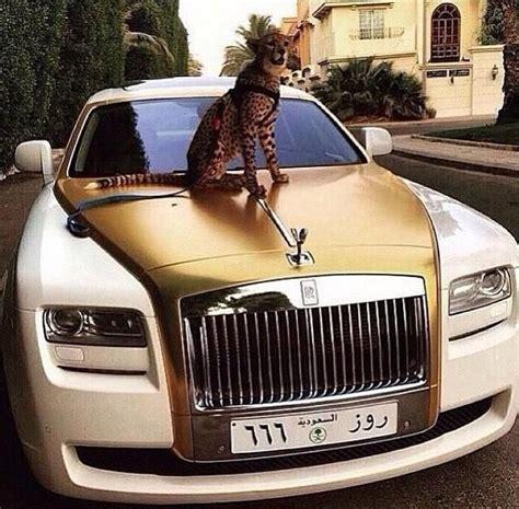rich arabs to spend money 37 pics