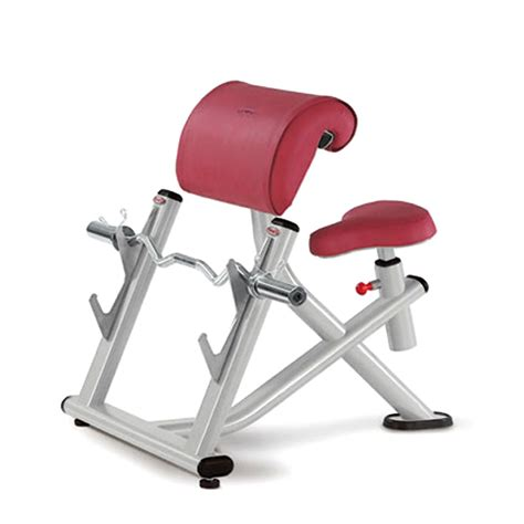 seated preacher curl bench seated curl bench 28 images dtx fitness preacher arm curl barbell weight bench