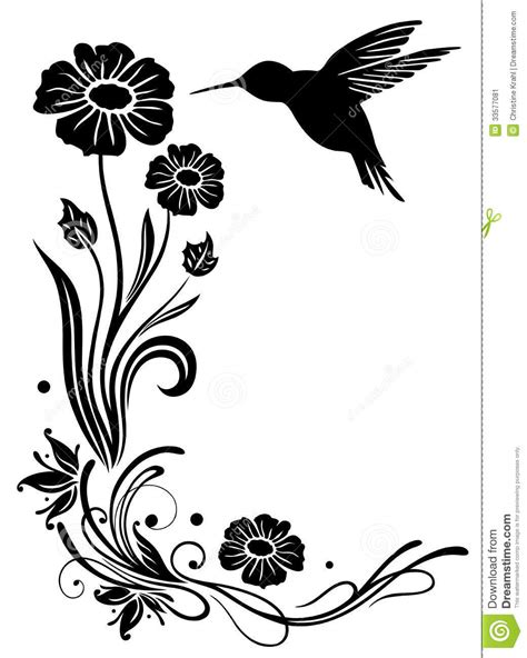 bevalet s hummingbirds and flowers a vintage grayscale coloring book vintage grayscale coloring books volume 3 books hummingbird flowers stock image image 33577081