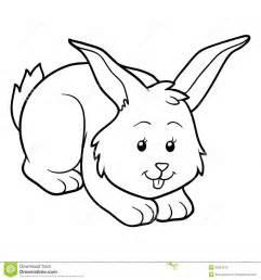 imagem coelho colorir