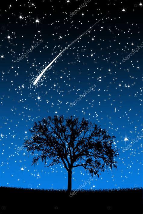 cool tree stars drzewo pod gwiazdy spadające gwiazdy w nocy zdjęcie stockowe 169 pockygallery 11972873