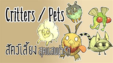 dont starve  critters pets