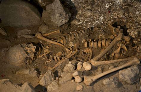 imagenes de fosiles descubren nuevos f 243 siles en atapuerca