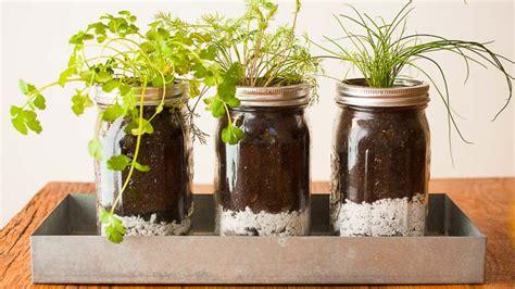 diy jar herb garden