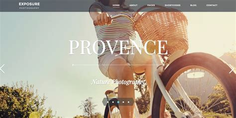 sites of the week exposure theme winners from themefuse abduzeedo sites of the week little greenback molly me vince
