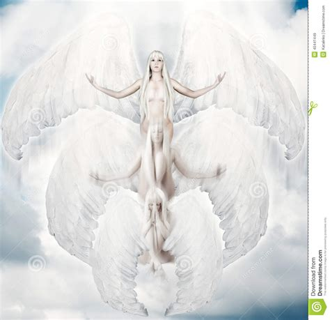 flying with large flying white with big wings stock photo image 40441449