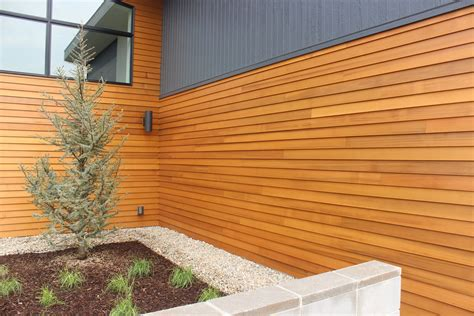 Buy Shiplap Wood Where To Buy Shiplap Cedar Siding 28 Images 17 Best