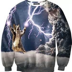 Lightning Cat Sweatshirt Lightning Cat Sweater Popsugar Tech