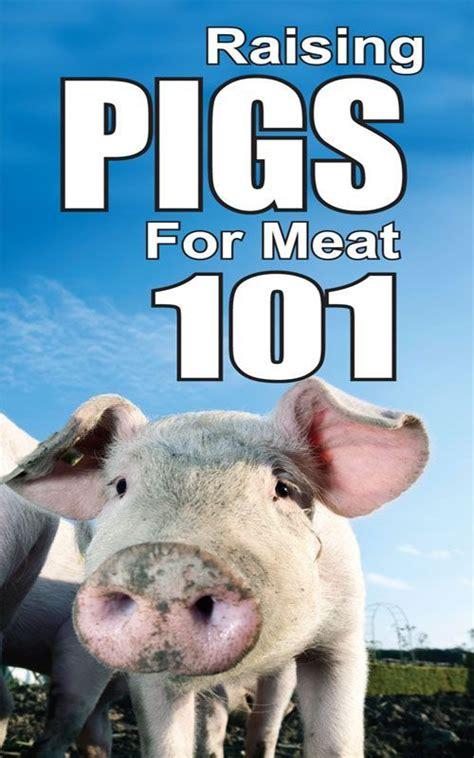 raising pigs  meat  raising pigs pinterest