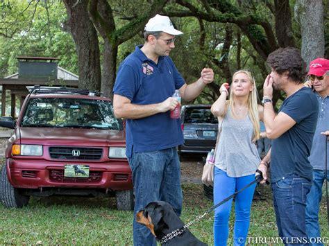 rottweiler breeders south florida 2015 south florida rottweiler klub rkna show thrumylens