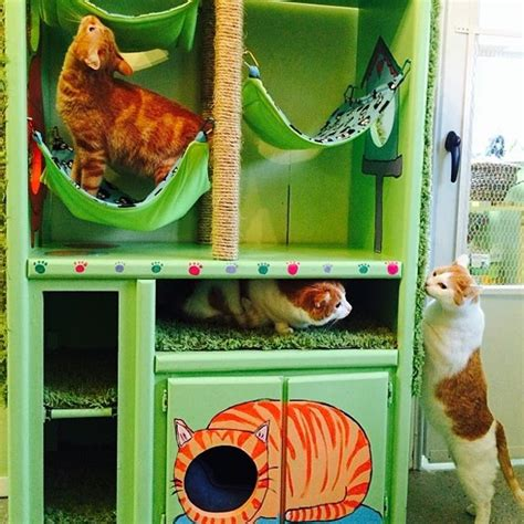 diy pit projects diy pet project ideas diy projects craft ideas how to s