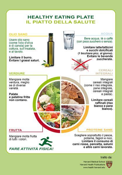 piatto alimentare scienze immagini la nutrizione piramide alimentare e