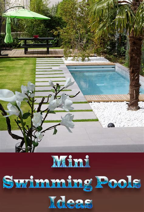 mini pools wonderful mini swimming pools ideas corner