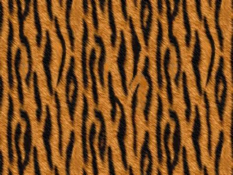 leopard pattern hd do you know your animal prints