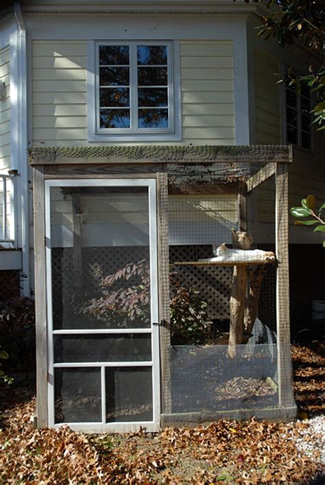 how to keep cats out of your backyard how to keep feral cats out of your backyard