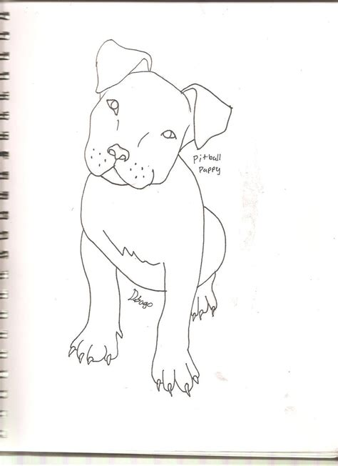 how to a puppy pitbull pitbull puppy drawings www imgkid the image kid has it