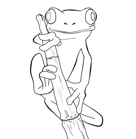 coloring pages of tree frogs free frog coloring pages to print out and color