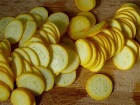 come si cucinano le zucchine zucchine gialle ortaggi zucchine gialle propriet 224