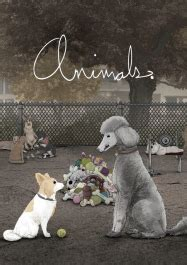 regarder we the animals film streaming vf complet 2019 gratuit flashx films s 233 ries animes en streaming vf film