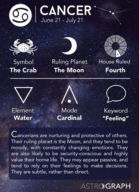 best horoscope 25 best ideas about astrological sign on pinterest leo