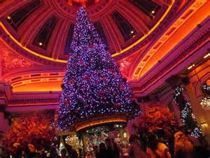 Hotel Chandelier Huge Christmas Tree Above The Bar Picture Of The Dome