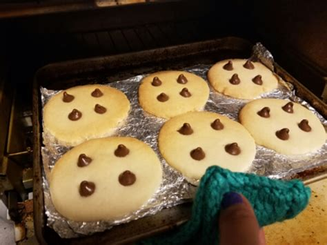 How To Bake Cookies In Oven Toaster Yes You Can Bake Cookies In A Toaster Oven Melissa S