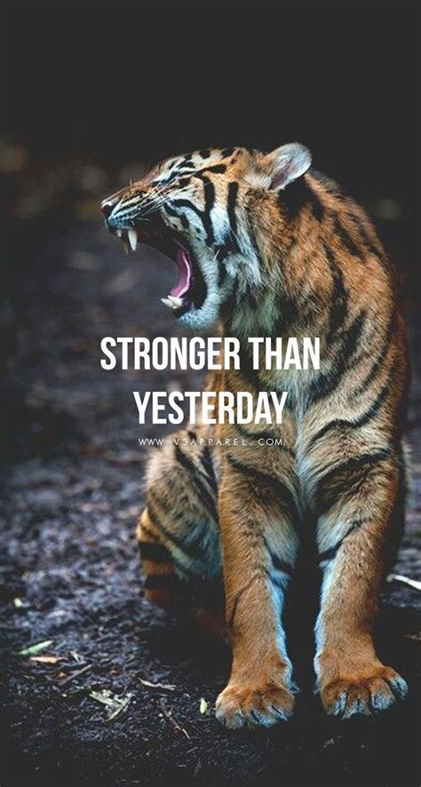 Stronger Than Yesterday Pictures, Photos, and Images for