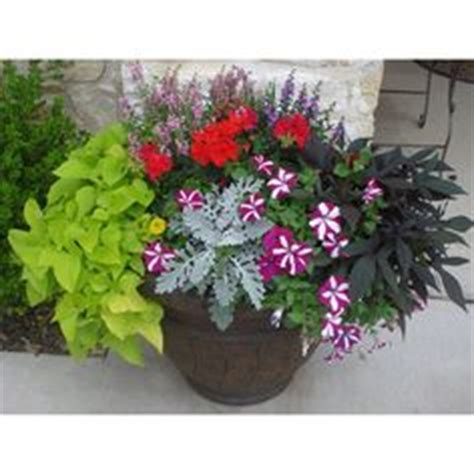 Planter Ideas Sun by 1000 Images About Yard Ideas On Flagstone