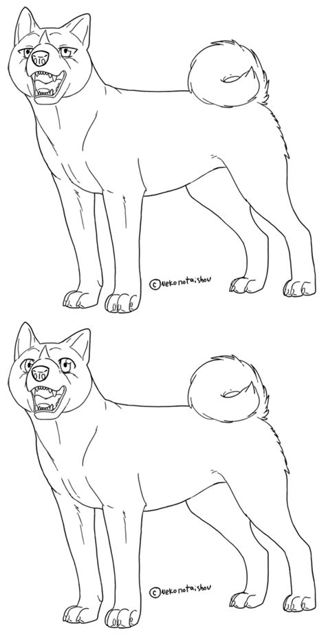 siberian husky coloring book stress relief coloring book for grown ups animal coloring book books ginga lineart akita inu 1 by nekonotaishou on deviantart