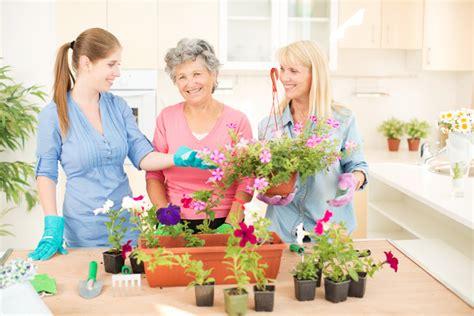 indoor gardening ideas for seniors indoor activities for your elderly loved one to enjoy during winter elderly care management