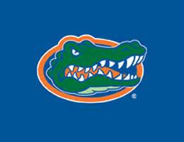 uf colors of florida blinds florida gators roller shades