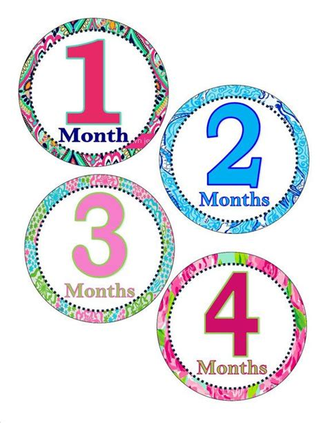 printable iron on monthly onesies monthly onesie printable sticker or iron on lilly pulitzer