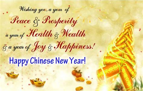 warm wishes on new year free family ecards greeting