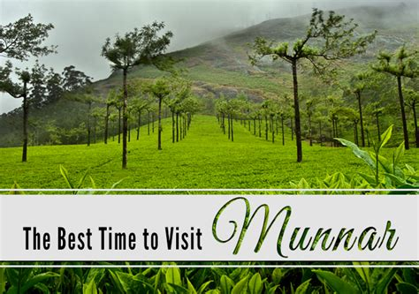 When Is The Best Time To See The Northern Lights by The Best Time To Visit Munnar Paradise Holidays Cochin
