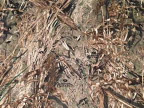 duck blind fabric mossy oak duck blind pc twill camouflage fabric at