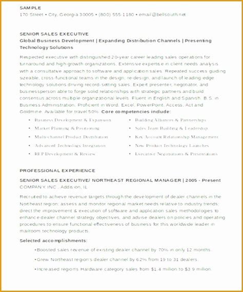 5 senior sales executive resume free sles exles