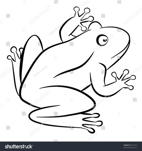 Outline Of A Portrait by Outline Drawing Frog Isolated On White Stock Vector 90157012