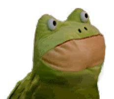 Meme Frog - dancing frog gifs find share on giphy