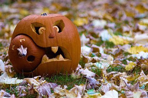 clever pumpkin clever pumpkin carving ideas iroonie com