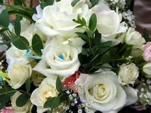 Cheap Delivery Flowers With Free Delivery - gy 246 ny 246 rű vir 225 gok zen 233 vel sz s wmv youtube