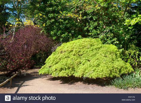 Garten Kaufen Nrw by Deutschland Nordrhein Westfalen K 246 Ln Rodenkirchen